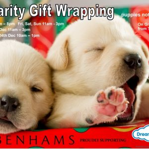 Poster showing 2 golden labrador puppies with Christmas gifts. We don't have these puppies at Debenhams Exeter sadly!
